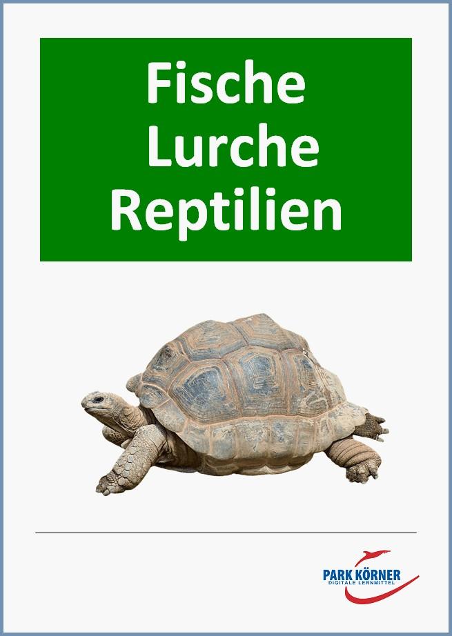 Fische – Lurche – Reptilien (mit Videosequenzen)