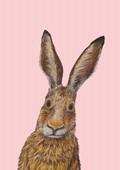 Ich heiße Hase, und... Postkarte VE 1=10