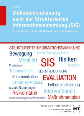 Massnahmenplanung nach der Strukturierten Informationssammlung (SIS)