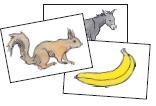 Bildkarten zu Lesen duch Schreiben